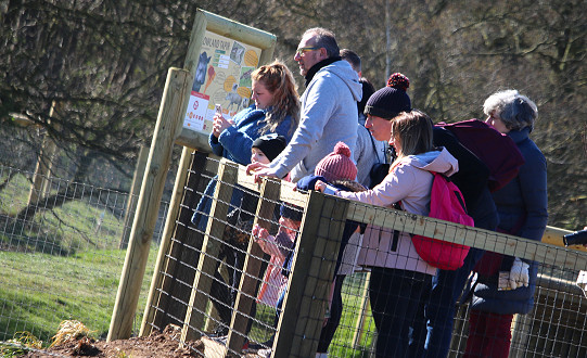 Visitors were greeted with new animals and a new reserve as the award-winning Yorkshire Wildlife Park reopens.